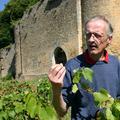 Château d'Arlay - Alain de Laguiche