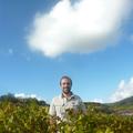Champagne Boulachin Chaput - Geoffrey Boulachin
