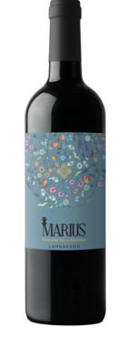 Domaine de la Dourbie - Marius Rouge