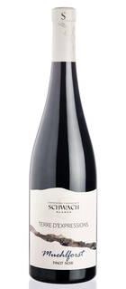 Domaine François Schwach - PREMIUM Pinot Noir Fût de Chêne - Lieu-Dit Muehlforst