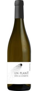 un PlanT sur la Comète - Chardonnay
