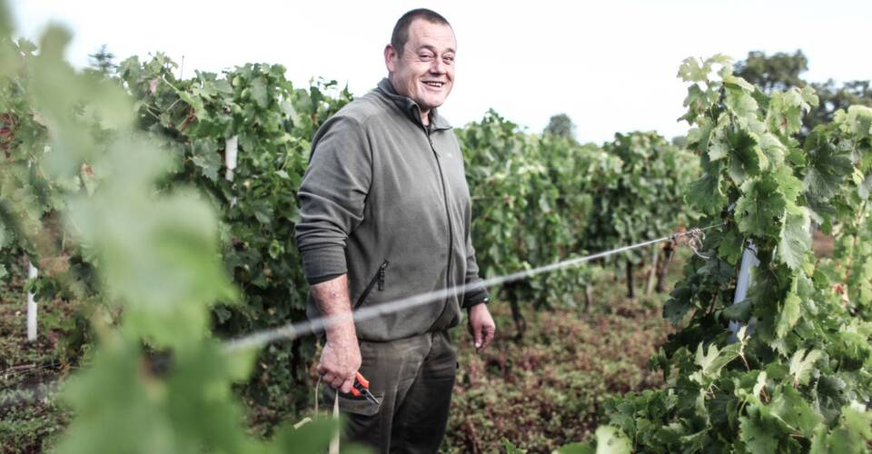 Winegrower, sell on Les Grappes!