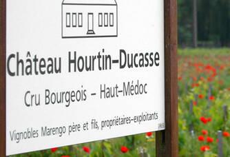 L'entrée au vignoble du Château Hourtin-Ducasse