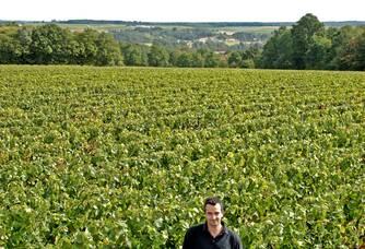 Vincent au coeur du Domaine de La Rochette