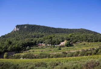 Vue du Domaine de Saint Amant