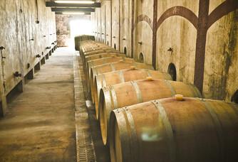 Chai du vignoble Falgueyret Leglise