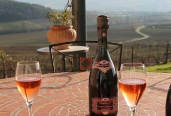 Dégustation au Champagne Marc