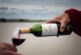 Verre de vin du domaine Le Taillou