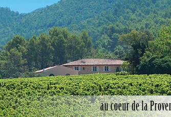 Le vignoble du Domaine du Clos Gautier