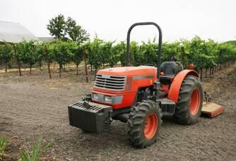 Le Travail dans les vignes au Domaine les Aphillanthes