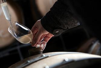 Dégustation des fûts du Champagne Soutiran