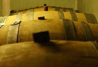 Nos chers demi muids, d'une capacité de 600 litres, utilisés pour la fermentation et l'élevage d'une partie de nos vins dont le Rosé de Saignée, le Coteaux Champenois rouge et le 100% Chardonnay...