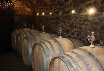 Élevage de nos vins
