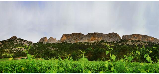 Domaine Saint Roch
