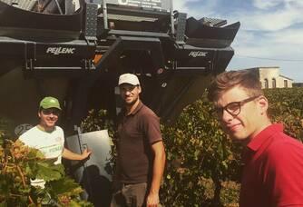 Equipe des vignobles du Baron de Montfort - Vendanges 2017