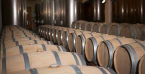 DOMAINE JAUME Pascal & Richard(Vallée du Rhône) : Visite & Dégustation Vin