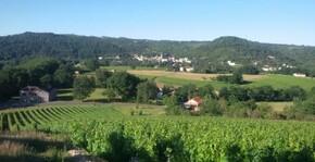 Vignobles Pelvillain                                                                                               (Sud-Ouest) : Visite & Dégustation Vin