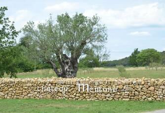 Bienvenue à Chateau Mentone