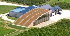 Domaine De Montcy(Loire) : Visite & Dégustation Vin