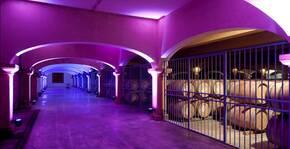 Château l'Hospitalet - La cave