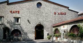 Les Vignerons du Pic(Languedoc) : Visite & Dégustation Vin