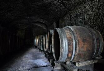Domaine Mérieau - La cave