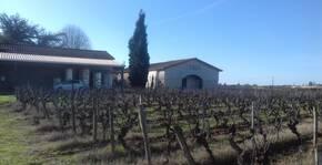 Château Piada(Bordeaux) : Visite & Dégustation Vin