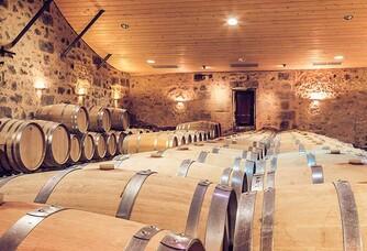 Château Cadet-Bon - La cave