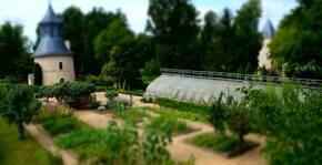 Château de Reignac - Les jardins