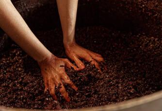 vinification intégrale en barrique