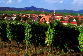 Belle vue du village de Beblenheim depuis les vignes du domaine Bott Geyl