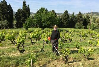 Patrice dans les vignes du Domaine de Crémone