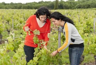 Hélène et Claire dans les vignes du Domaine des Demoiselles de Pallus